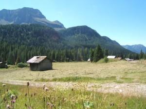 Paesaggio sulla via del passo San Pellegrino