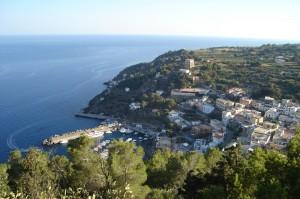 Veduta dell'isola da Capo Falconiera