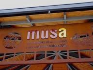 museo-musa