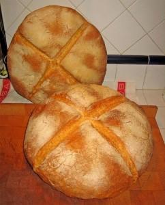 Tipica forma del pane di Altamura