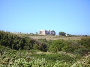 Collina orientale di Selinunte