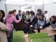Progetto Verde - orto didattico