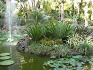 giardini-la-mortella-4
