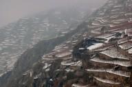terrazzamenti Sondrio