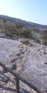 Impronte dei dinosauri - Rovereto