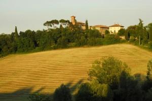 La chiesetta di Croara immersa fra i campi di grano