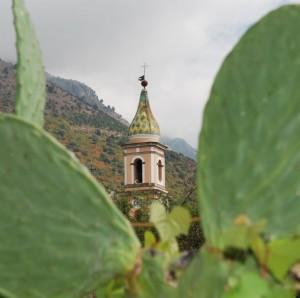 campanile tra le foglie dei fichi d'india