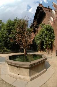 Fontana-albero
