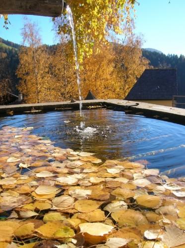 Lauregno - splendore d'autunno nella fontana