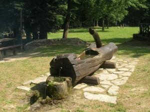 fontana scavata nel tronco Riserva di Collemeluccio