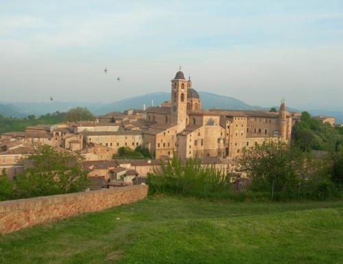 Urbino - Quadretto urbinate