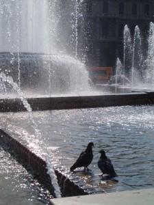 Fontana-Piazza Castello