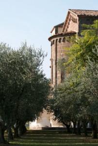 Cattedrale Romanica