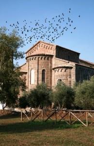 Colombi sulla cattedrale