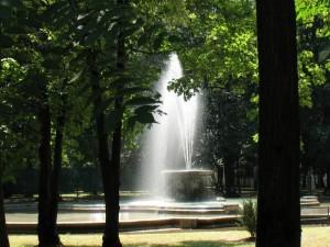Zampillo al parco