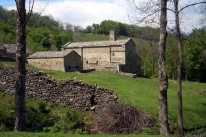 la Certosa di Montebenedetto tra i boschi