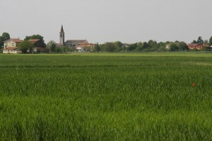Chiesa San Giacomo di Bellombra (RO)