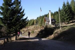 tra i boschi 2