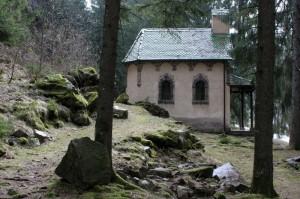tra i boschi 3