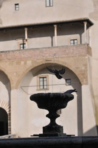 Pitigliano - La fontana ed i Piccioni 2