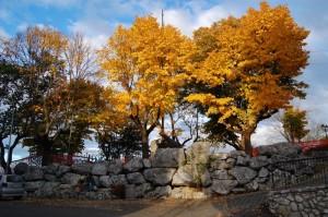 Fontana dei Pesci e Mura Ciclopiche