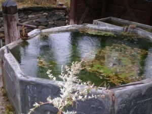 fontana di Thures