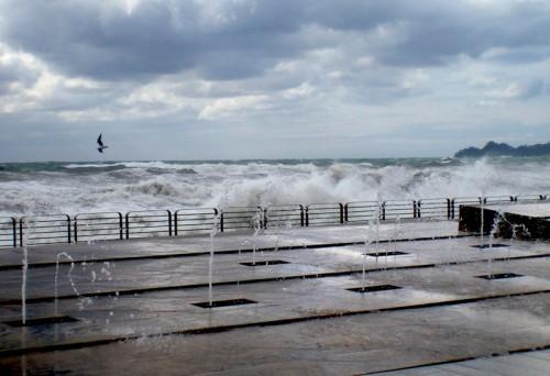 Chiavari - Zampilli tra le onde
