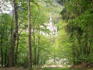 Chiesa tra i boschi - Piode