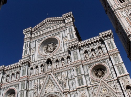Firenze - Blu e bianco