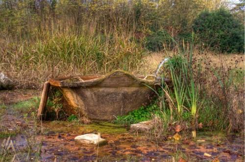Vazzola - Fontana selvatica