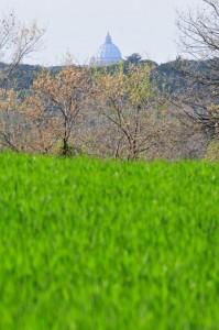 """""""La"""" Cupola vista dall'Agro Romano"""