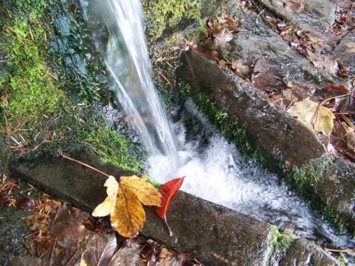 Sillano - La Fontana nel Bosco