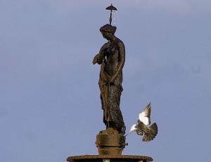 La Venere e il Piccione