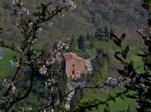 Pieve di S.Maria Annunziata di Montesorbo