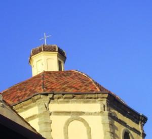 Cupola chiesa nostra signore delle grazie-SANLURI