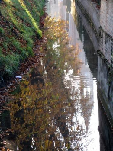 Isola della Scala - riflessi d'autunno