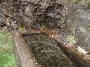 fontana naturale in inverno