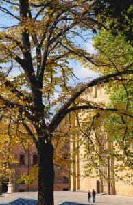 l'autunno e la cattedrale