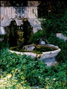 Fontana Medioevale