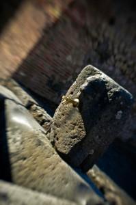 Fontanella Pompei Scavi