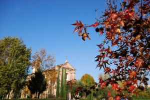 Autunno a S. Michele