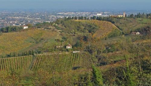 Cesena - Chiesetta di San Demetrio