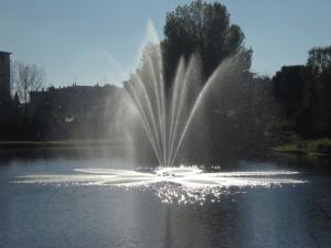 Fontana nel laghetto