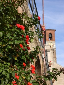 Scorcio di campanile con rose