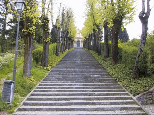 Montevecchia - 133 ascensioni