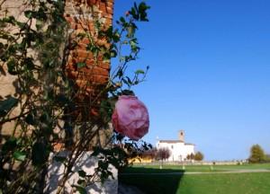 La rosa e la chiesa
