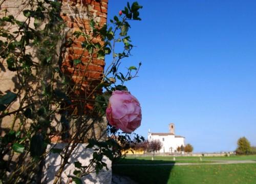 Ceresara - La rosa e la chiesa