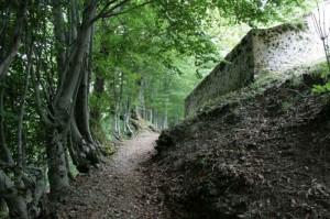 La chiesa nascosta nel bosco