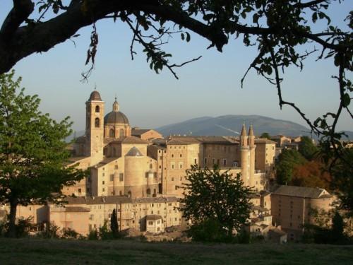 Urbino - Il cupolone del Duomo visto dalla Fortezza Albornoz