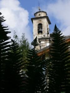 Il campanile della Parrocchiale tra le felci